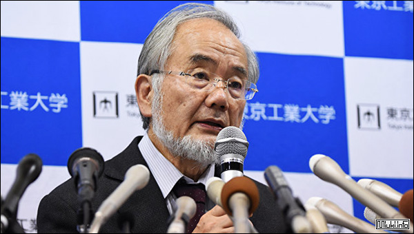 Нобелевскую премию по медицине дали японскому ученому