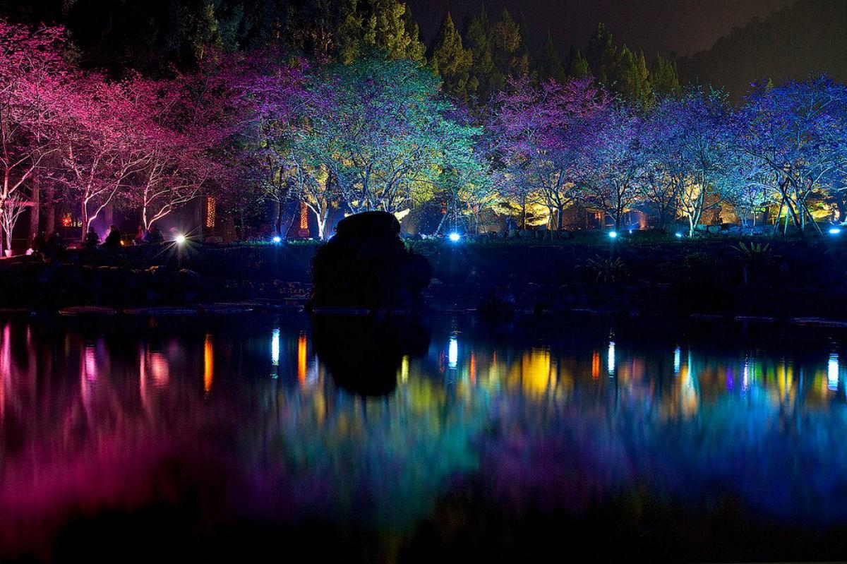Праздник цветения сакуры на Тайване. Прекрасная деревня Формосан 0 1607a6 ab12941d orig