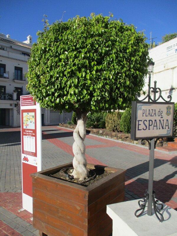 Нерха. Площадь Испании (Plaza de España)