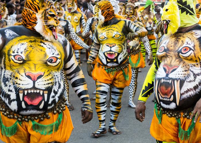 Пули Кали — игра в тигра. Керала На фестивале Пули Кали в штате Керала на улицы выходят тысячи