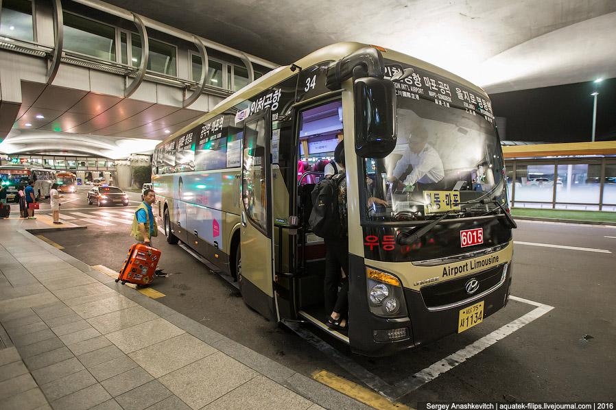 29. Внутри автобус совсем не такой, каким мы привыкли видеть наши междугородние автобусы. Полны