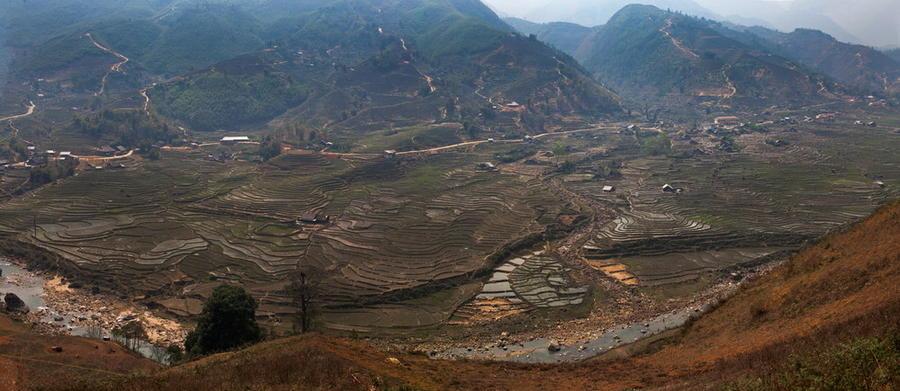 13. Рисовые террасы во Вьетнаме. Видны посевы риса.