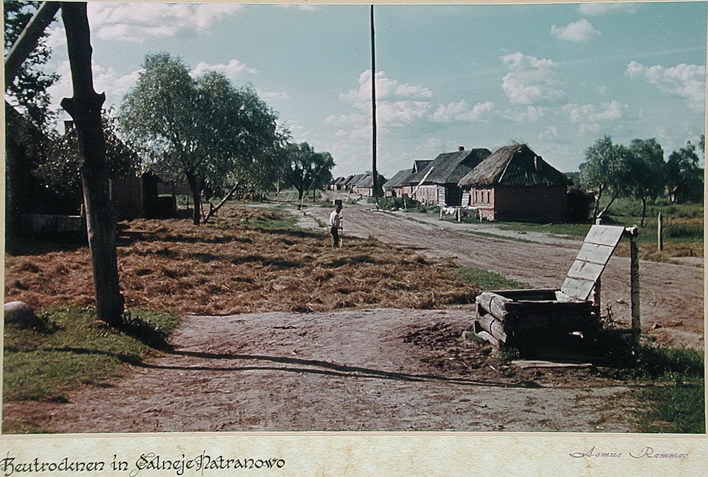 Советский крестьянин сушит сено в деревне Дальнее Натраново (Dalneje Natranovo), Калужская область