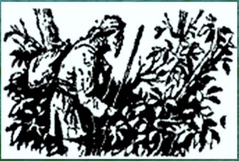 Иллюстрация к книге В.К.Арсеньева Дерсу Узала (14).jpg