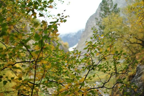 Осень в горах Домбая