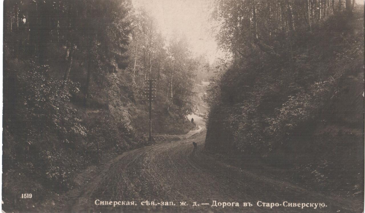 Дорога в Старо-Сиверскую
