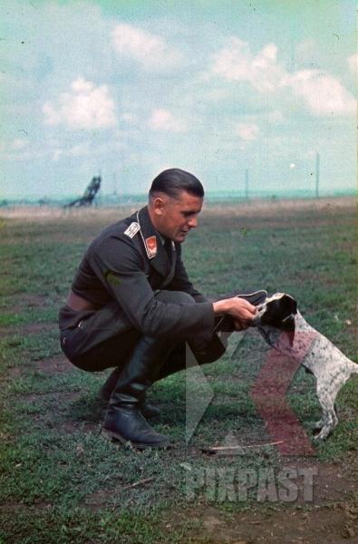 stock-photo-german-luftwaffe-flak-officer-play-with-dog-russia-battlefield-1941-3-flak-abt-701--8038.jpg