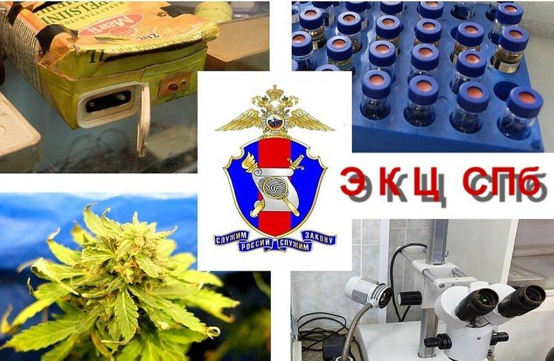 Экспертно - криминалистический центр СПб