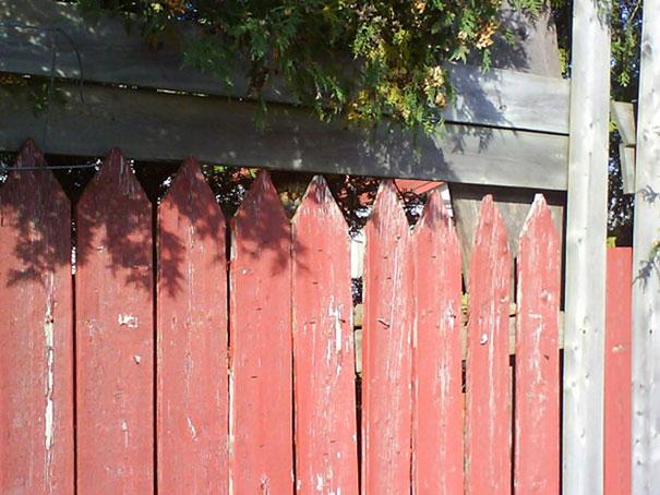 Забор как забор.
