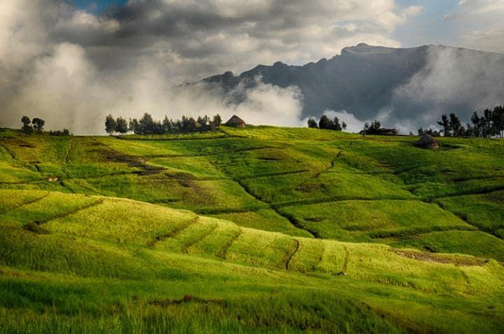 Национальный парк Сымен, Эфиопия. Под угрозой с 1996 года.