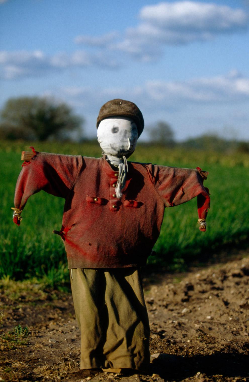 8. На английском языке, пугало произносится как «Scarecrow», что в буквальном переводе означает