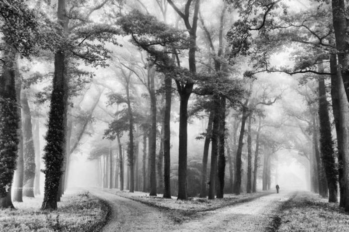 Фото от Ларса ван де Гура