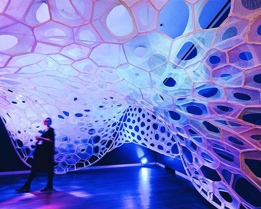 3D Printed Web Installation Playing with Light (9 pics)