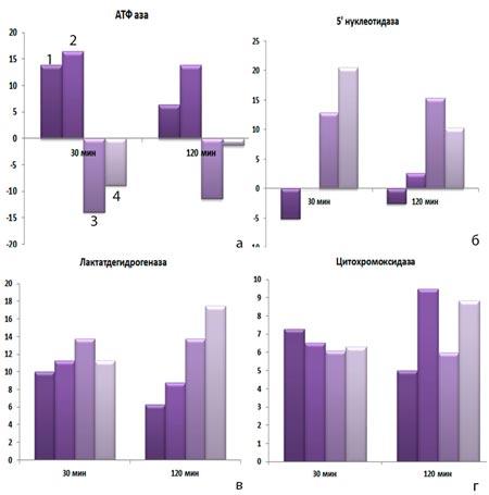 Ферментативная активность клеток врожденного иммунитета, зараженных S. еnteritidis после предварительного воздействия на них КФС №1, №2 с 5-м элементом