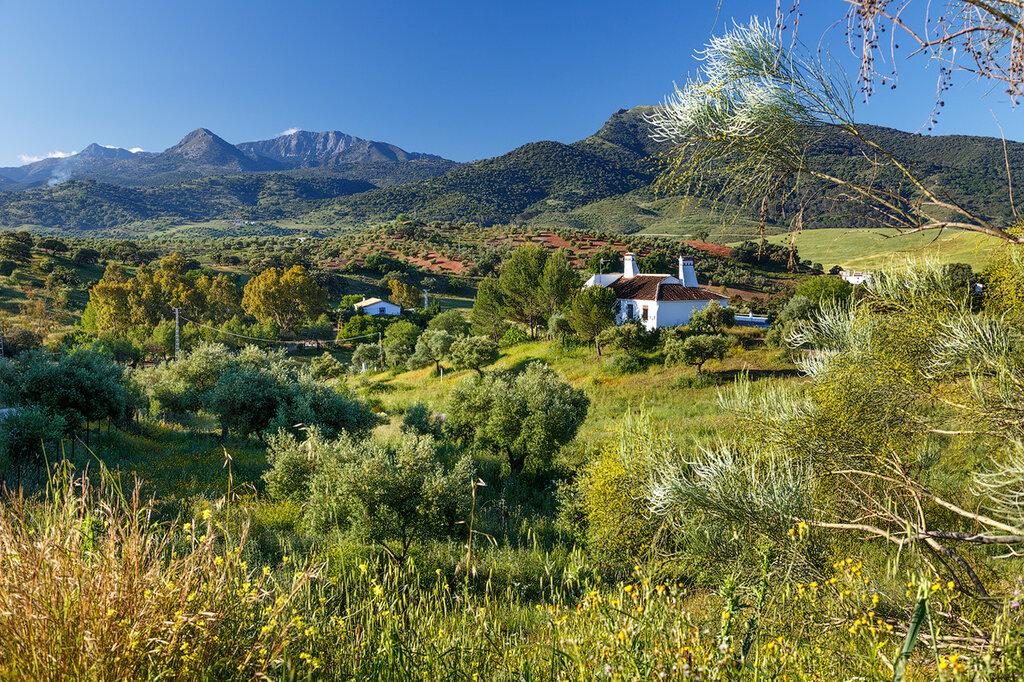 Андалусия на машине: Гранада-Кордоба-Севилья-Гибралтар