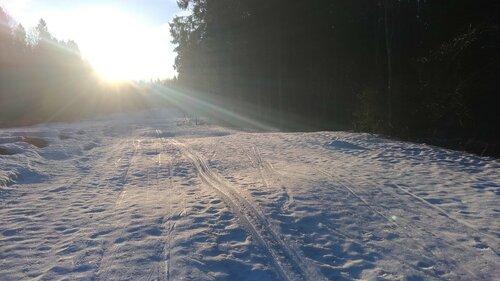 лыжня в лучах утреннего солнца