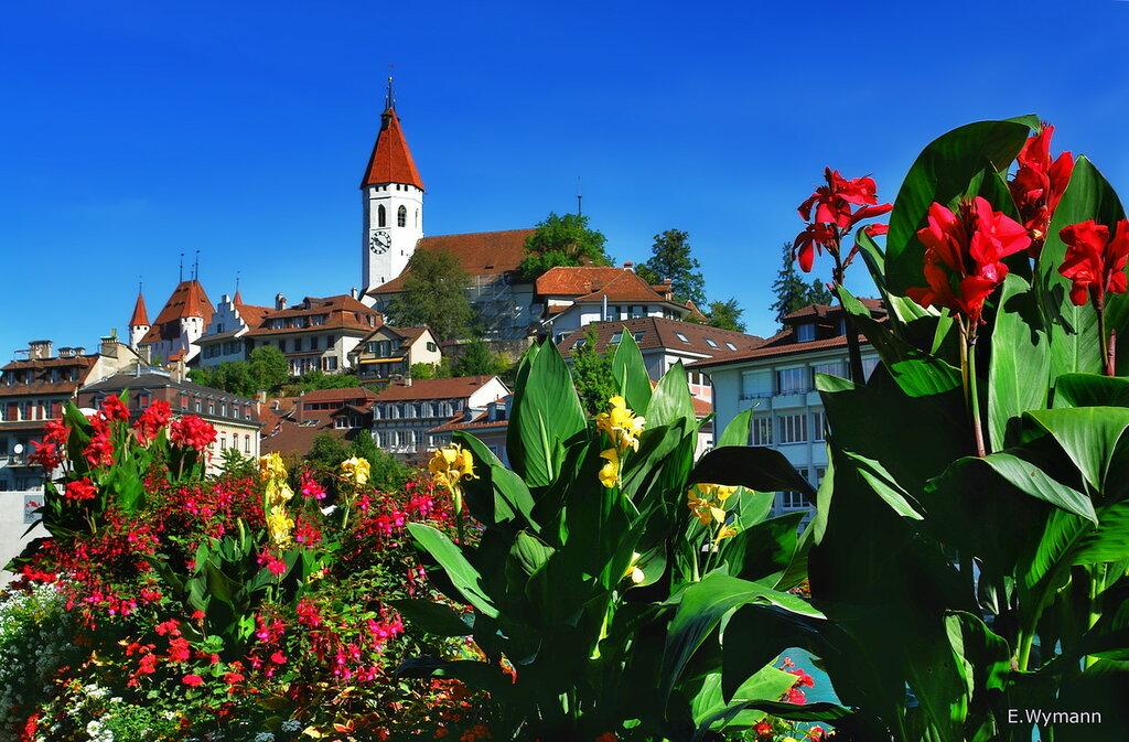 замок и цветы