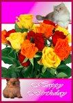 С днём рождения! Кошки и розы.