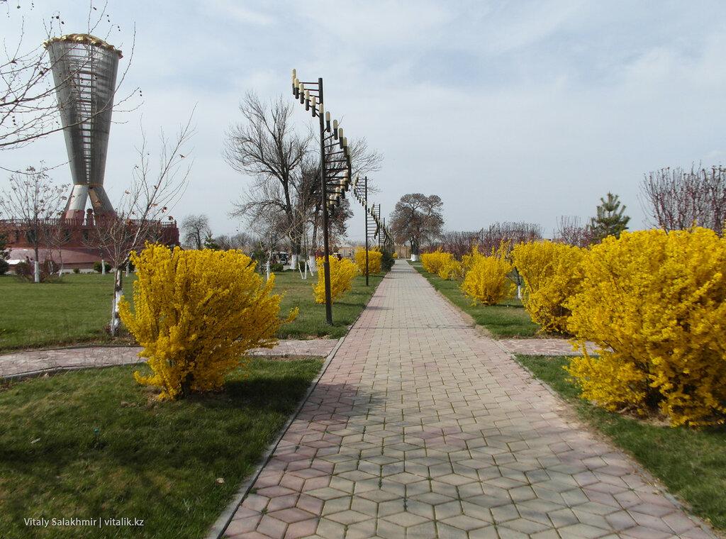 Зелень в Парке Независимости, Шымкент