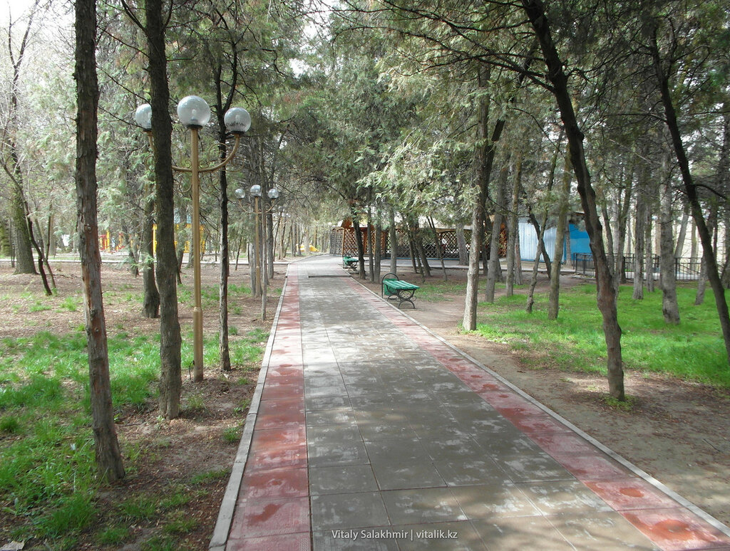 Тропа в дендропарке Шымкента