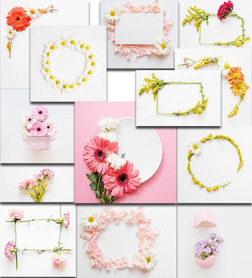 Цветы на белом фоне - Клипарт / Flowers on a white background - Clipart
