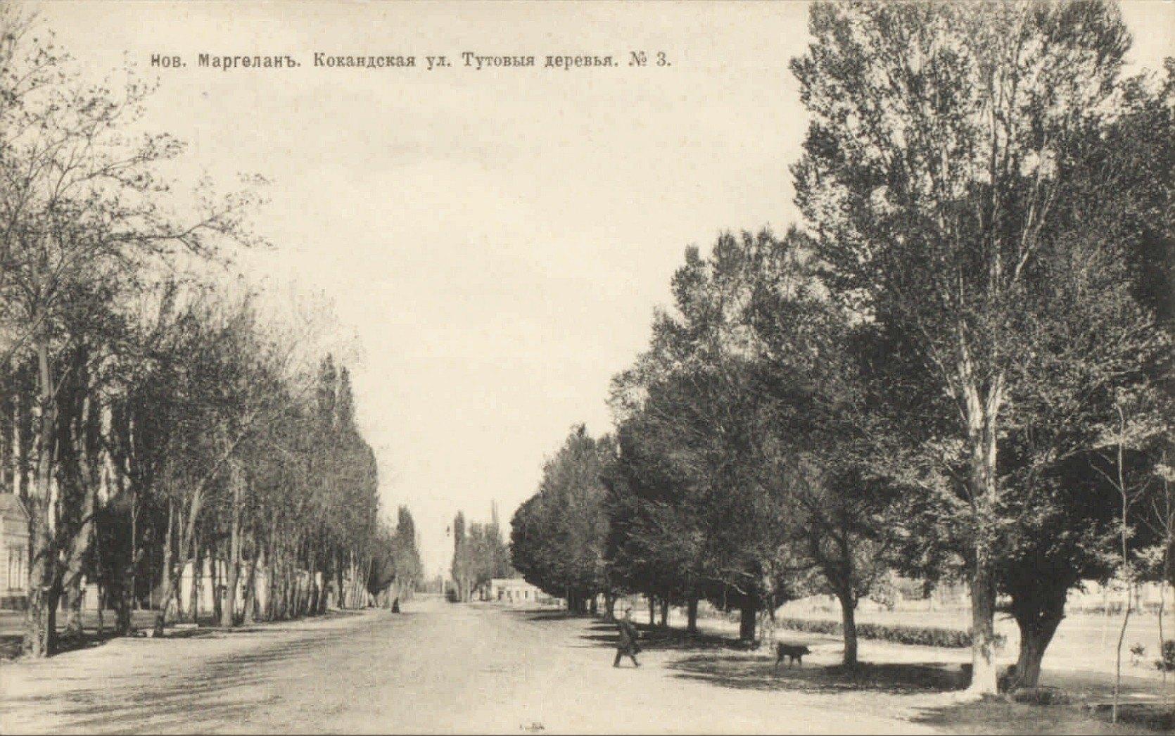 Новый Маргелан. Кокандская улица. Тутовые деревья