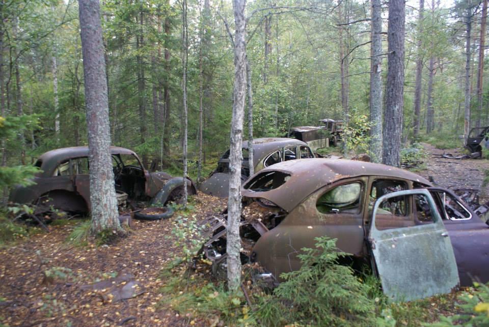 Кладбище автомобилей в Швеции