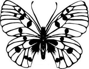 Бабочки (трафареты)