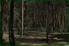 http://img-fotki.yandex.ru/get/133748/15842935.2ed/0_e3bce_92078e0e_orig.png