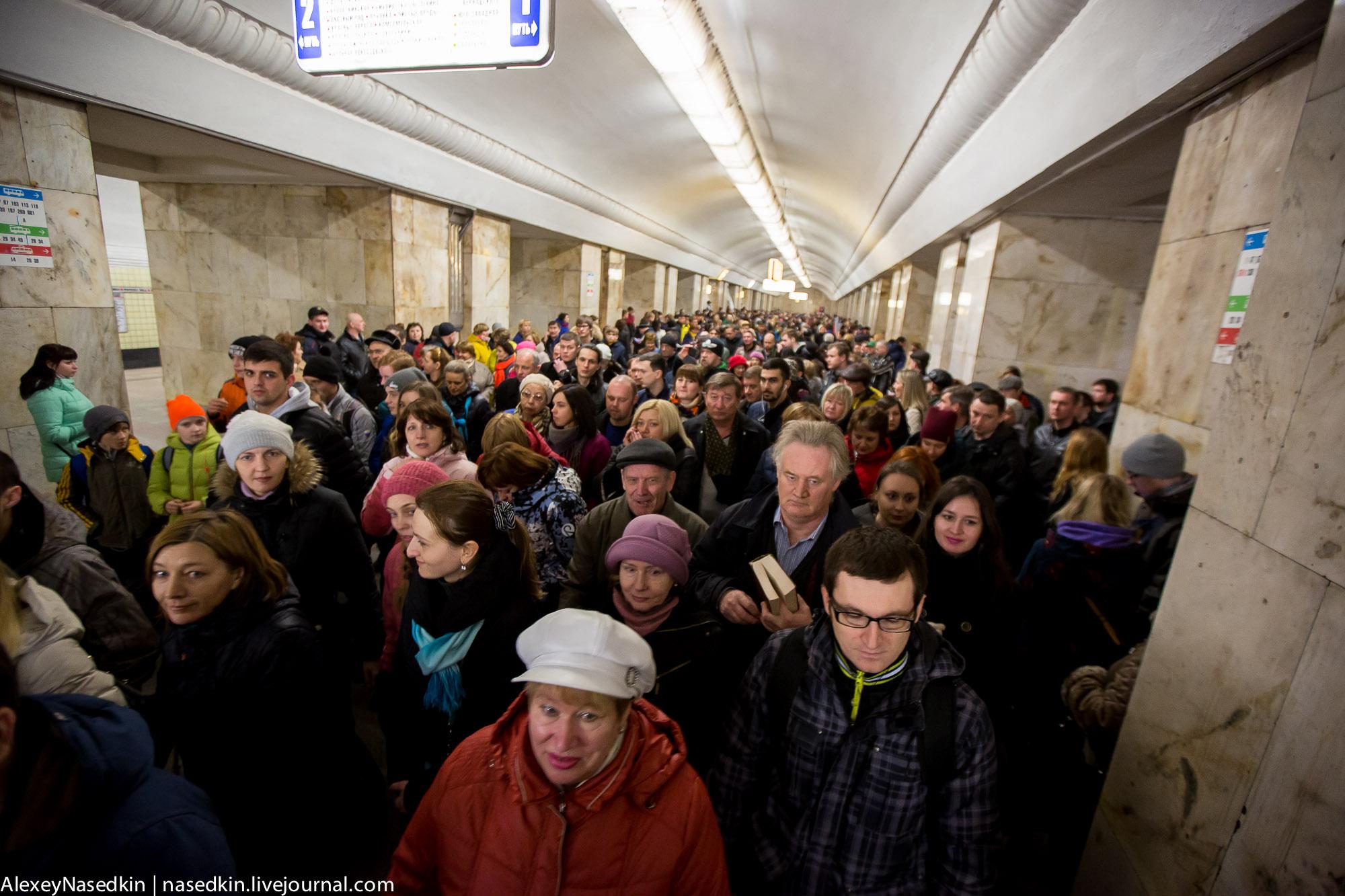 КРЫМНАШ-2017. Как люди шли на народный праздник (ФОТО) GA8A5235.jpg