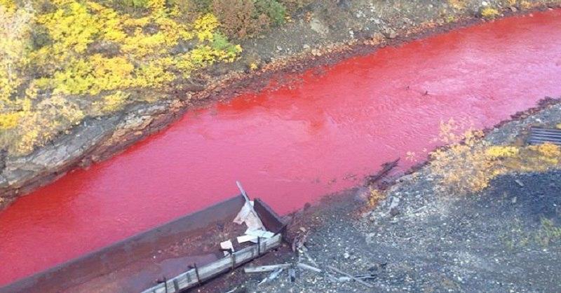 Багровая река в Норильске. И это совсем не сиквел знаменитого фильма! (2 фото)