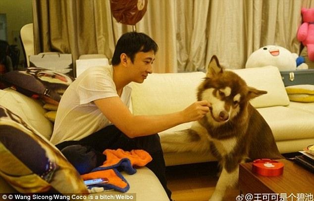 В китайских социальных сетях появились фотографии, на которых видно, как весьма довольное животное п