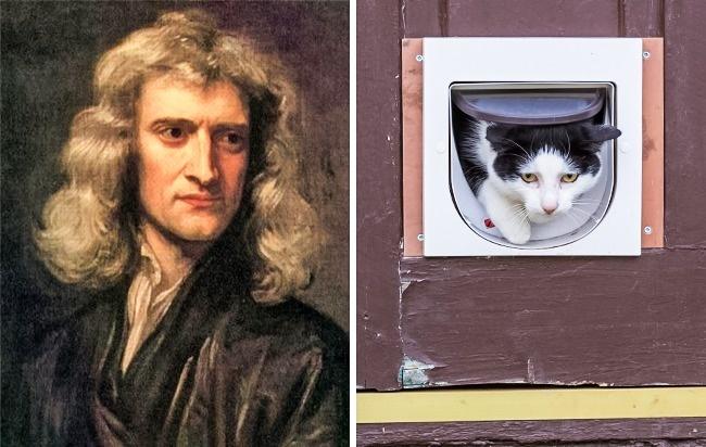 © Sir Godfrey Kneller  © depositphotos  Любимая кошка отвлекала великого ученого отгран