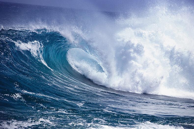 Люди воды, считаются людьми обаятельными и отзывчивыми, а также они умеют сочувствовать. Они оч