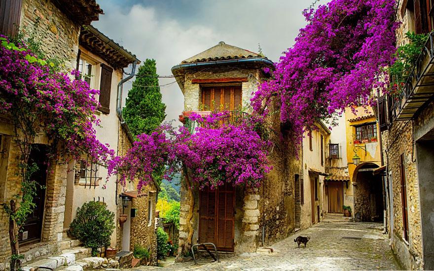 Прованс, Франция.