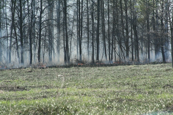 Пожарные потушили возгорание наскладе древесины вТомской области