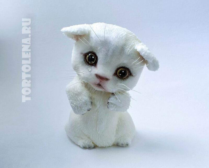 котёнок---СЖАТ---DSC_1072-2-2.jpg