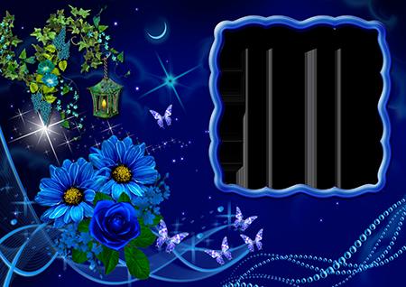 Рамка для фото с синими цветами, бабочками и фонарем в ночном лесу