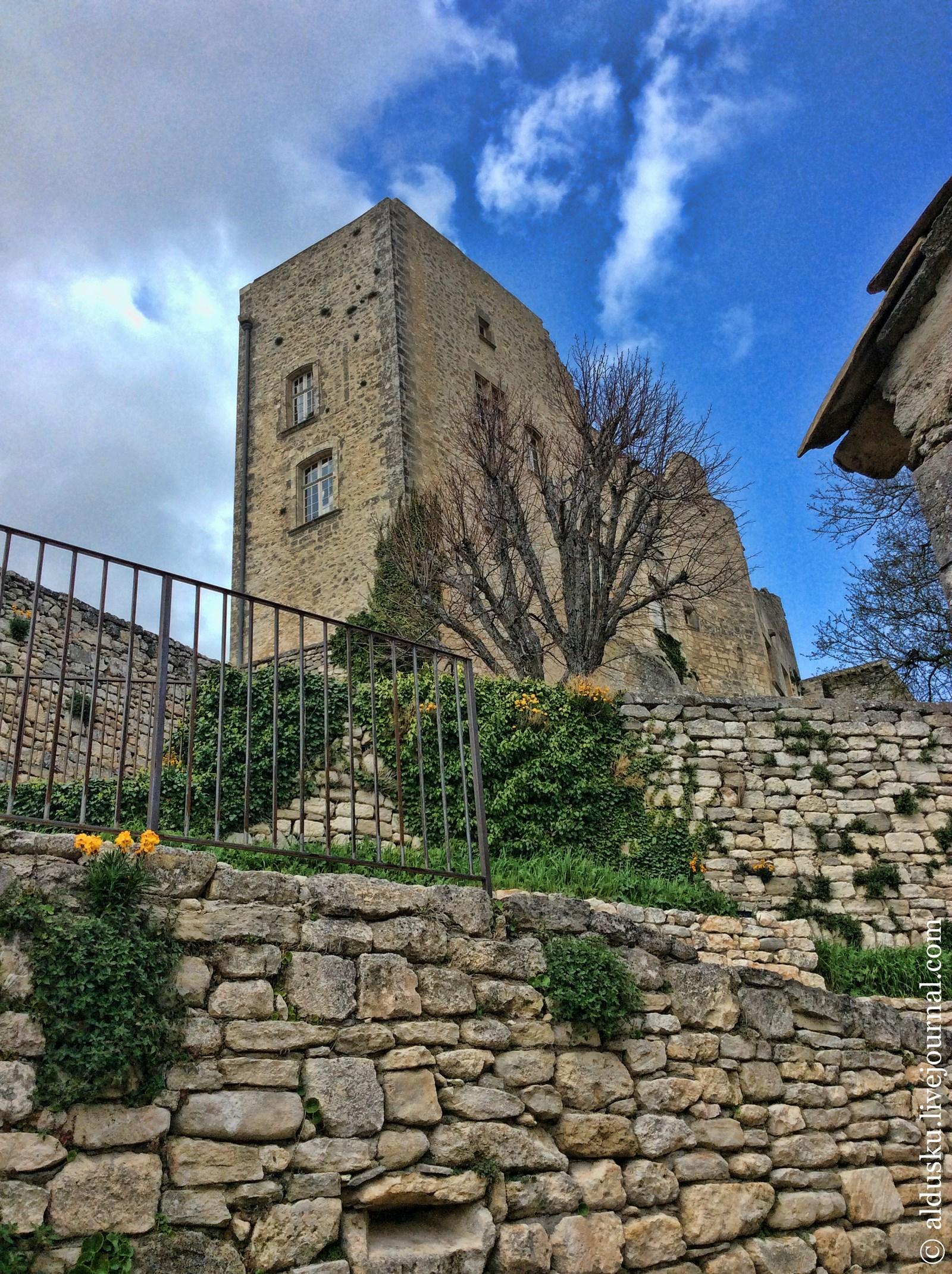Моя попытка сфотографировать общий вид замка (руин)
