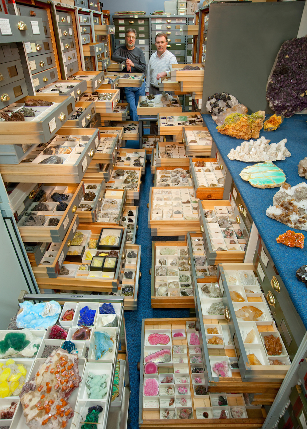 An assortment of mineral specimens from the Department of Mineral Sciences' collections are displaye