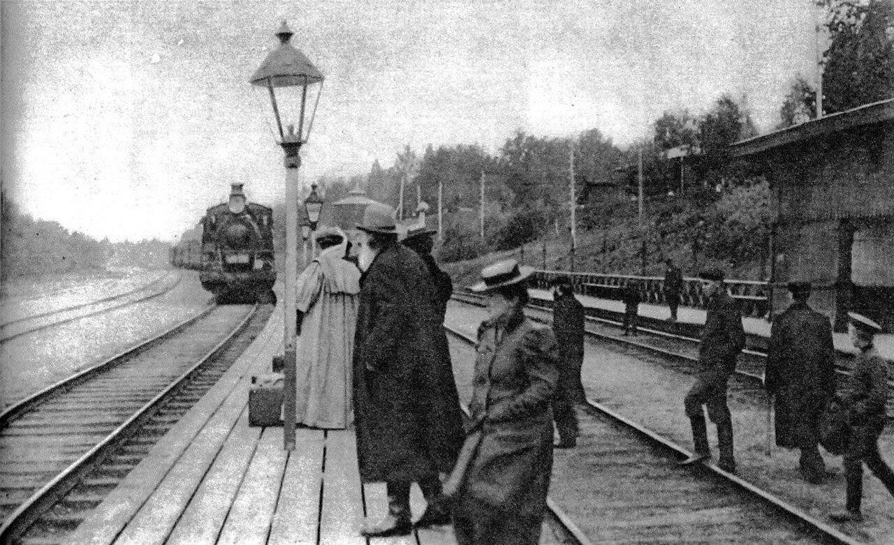 Окрестности Тулы. Станция Козлова Засека