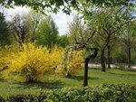 Весна в Вене.