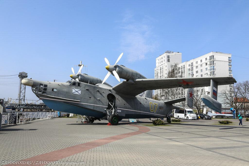 Калининград за один день. Музей Мирового океана