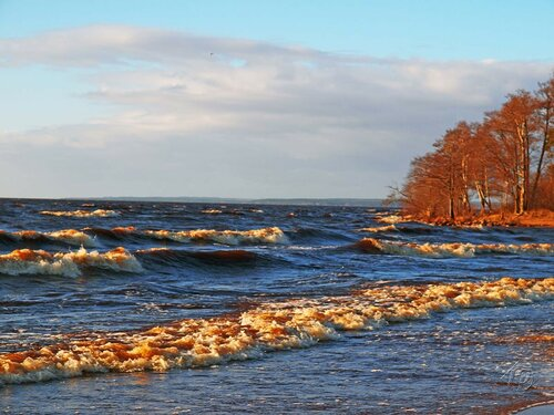 Разные волны залива