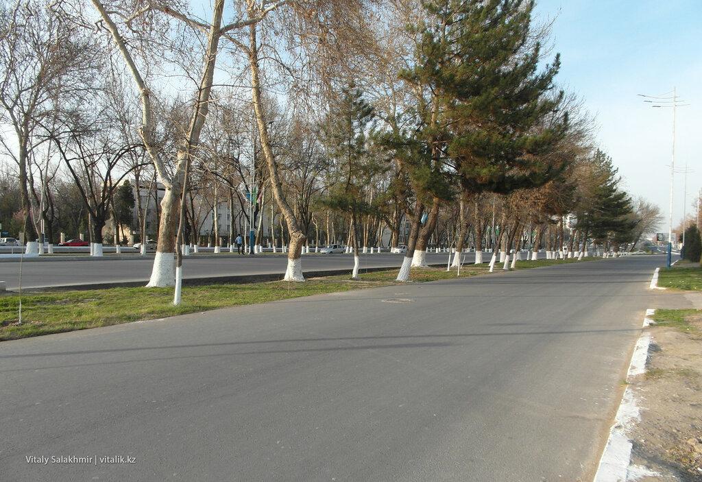 Проспект Бунедкор, Ташкент
