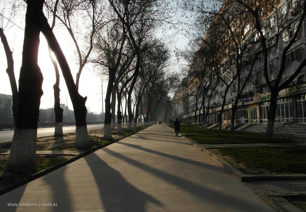 Ташкентская улица в марте 2018