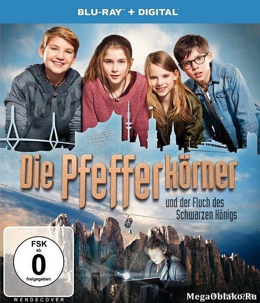 Детективы из табакерки и проклятие черного короля / Die Pfefferkorner und der Fluch des Schwarzen Konigs (2017/BDRip/HDRip)