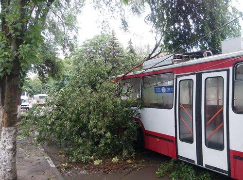 Последствия стихии в Бельцах: дерево рухнуло на троллейбус