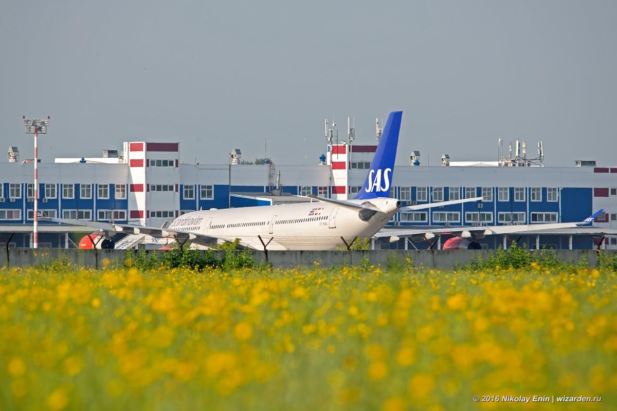 Airbus A340 в Толмачёво. История одного инцидента