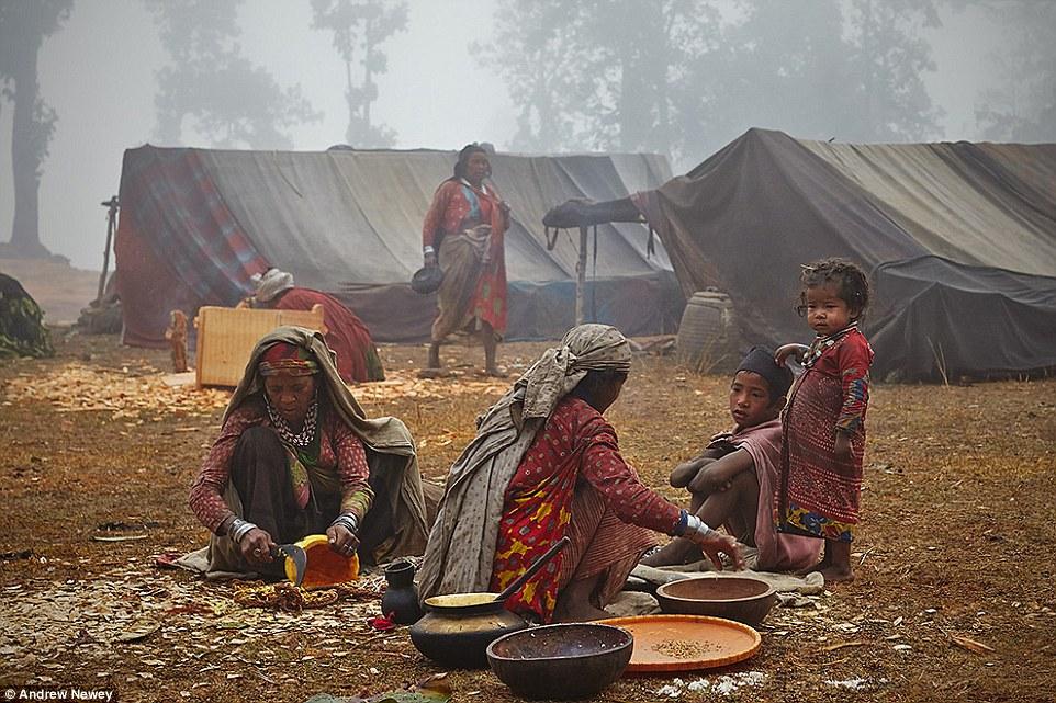 У народа рауте очень тяжелая жизнь, и в последнее время она всё больше усложняется в связи с вырубко